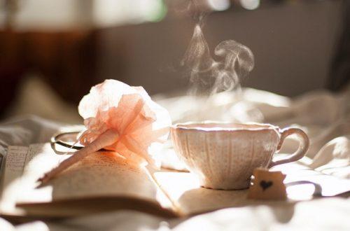 kniha a čaj pro luxusní chvíle